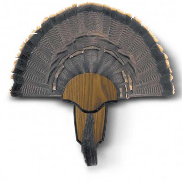 Turkey Hunting Accessories